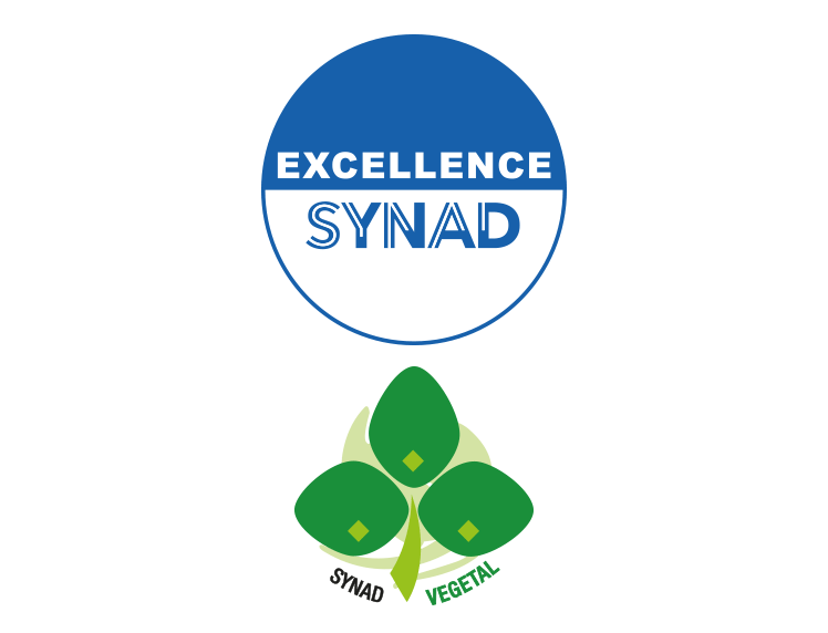 logo_excellence_synad