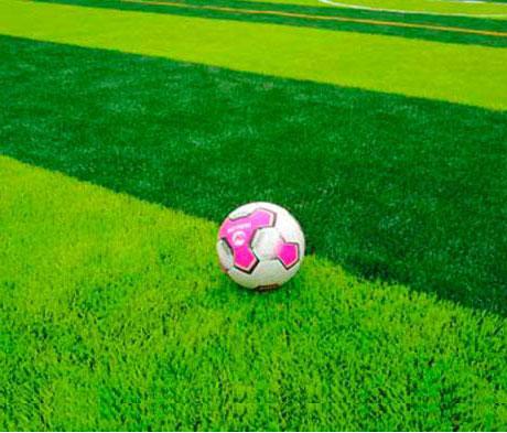 Campos Eco-sostenibles: una nueva forma de hacer deporte