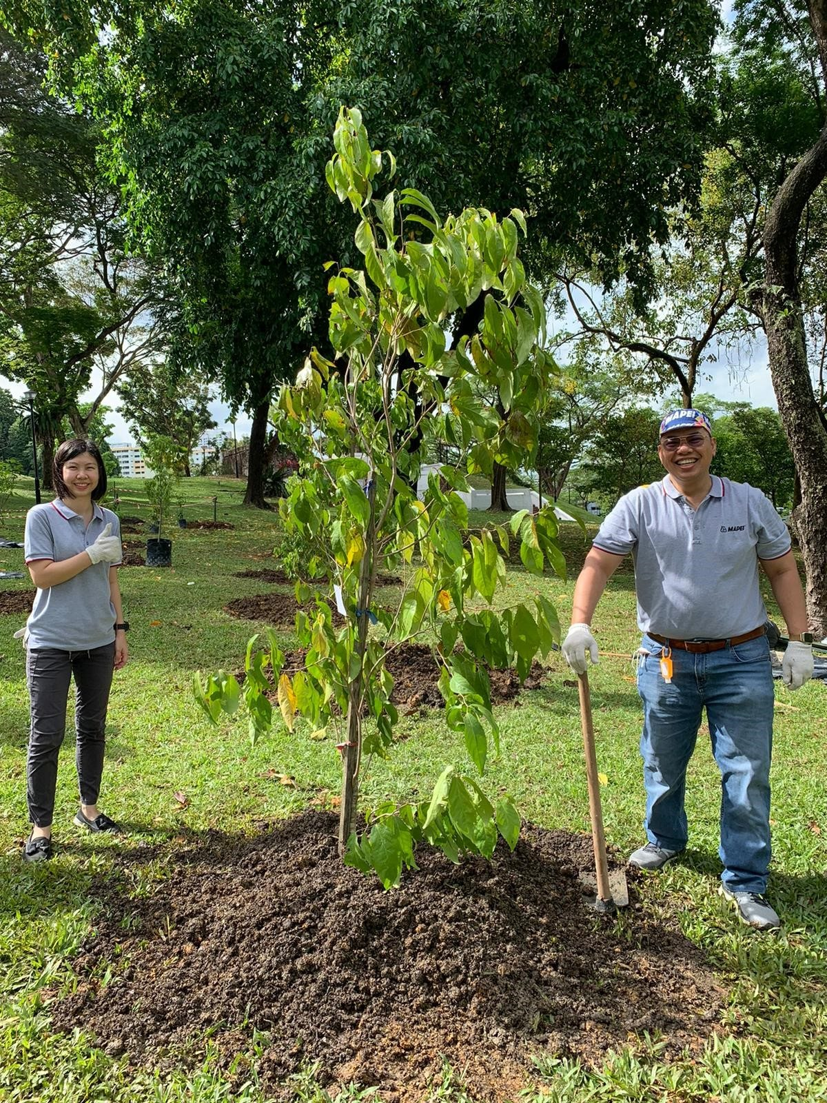 Mapei Singapore supports the One Million Trees movement