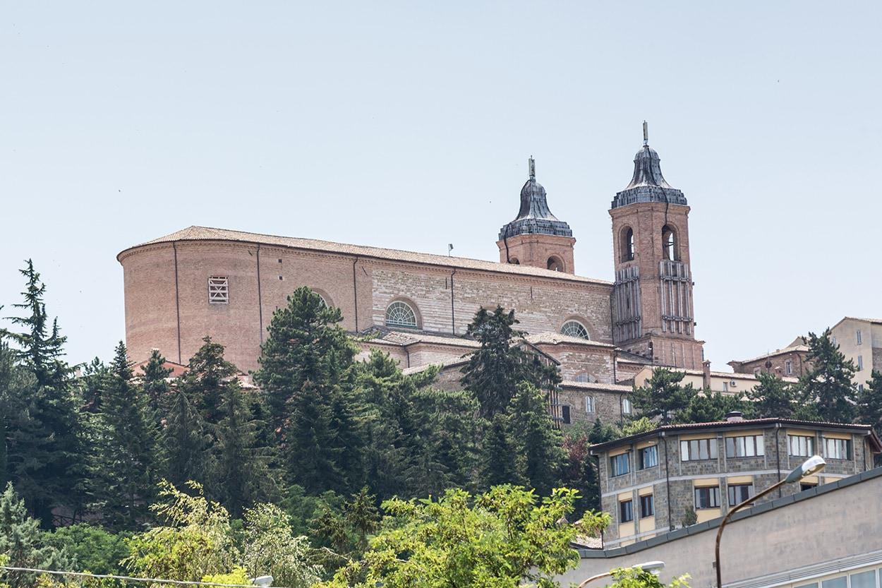 Terremoto 2016_Mapei_Cattedrale Santa Maria Annunziata, Camerino_alberi