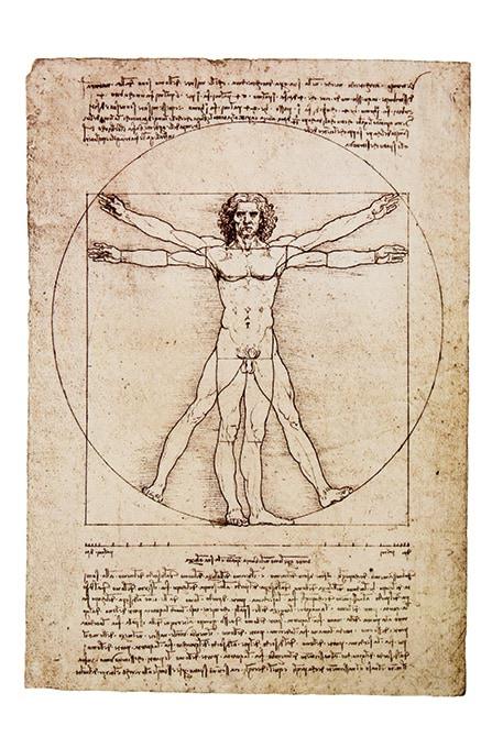 Mapei e Leonardo da Vinci_disegno uomo - shutterstock_39157969