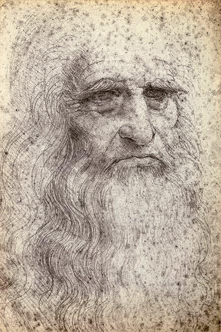 Mapei e Leonardo_disegno - ritratto Leonardo da Vinci - shutterstock_39157978