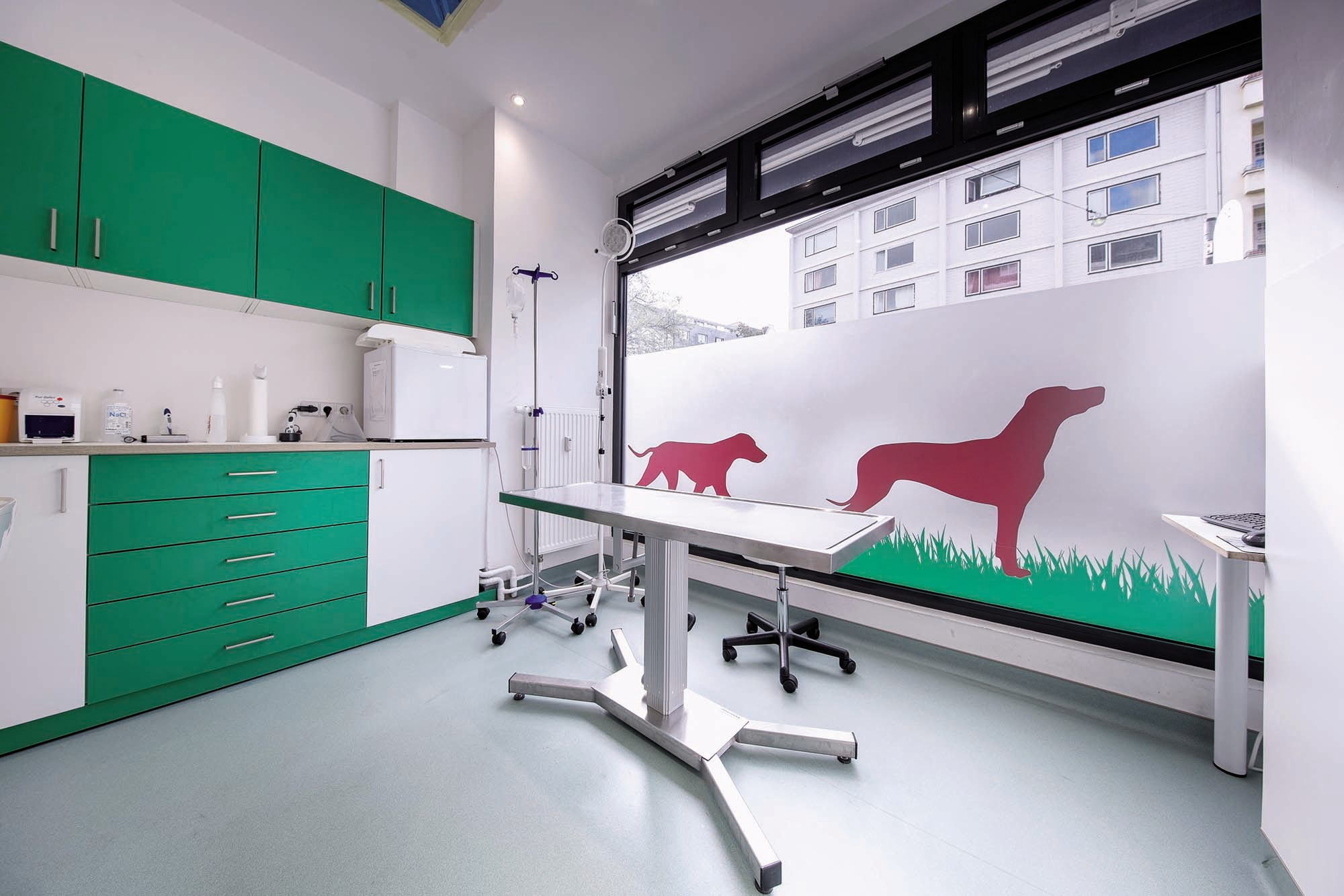 One of the areas inside the Bärenwiese Veterinary Care - Berlin - Germany